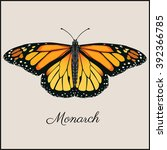 Stock vector monarch butterfly card flat vector illustration vintage beautiful card in frame for print or web 392366785