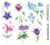 watercolor floral collection... | Shutterstock . vector #392401072