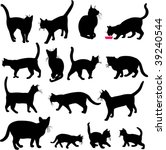 cats collection   vector | Shutterstock .eps vector #39240544