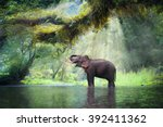 wild elephant in the beautiful... | Shutterstock . vector #392411362