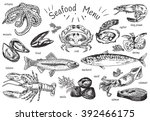 seafood menu  octopus  mussels  ... | Shutterstock .eps vector #392466175