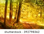 autumn forest with vibrant... | Shutterstock . vector #392798362