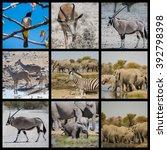 animals and desert landscape in ...   Shutterstock . vector #392798398