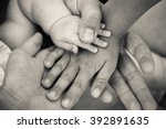 four hands. concept of love ... | Shutterstock . vector #392891635