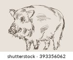 hog vector  hand draw sketch | Shutterstock .eps vector #393356062
