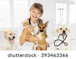 Stock photo smiling vet and puppy and kitten in clinic 393463366