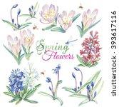 hand drawn watercolor bright... | Shutterstock . vector #393617116