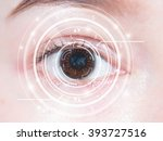 close up of woman's brown eye.... | Shutterstock . vector #393727516