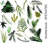 watercolor plant  raster | Shutterstock . vector #393764782