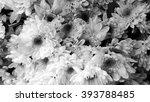 flower abstract background  ... | Shutterstock . vector #393788485