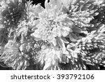 flower abstract background  ... | Shutterstock . vector #393792106
