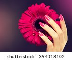 Elegant Female Hands With Pink...