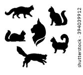 Maine Coon Cat Icons And...