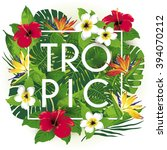 tropic and exotic beautiful... | Shutterstock .eps vector #394070212