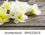 white daffodil flowers on old... | Shutterstock . vector #394222615