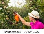Gardener Applying An...