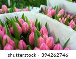 Bunches Of Tulips For Sale At...