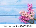 Background  With Fresh  Pink...