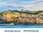 Rocky Cliff Face With Bush And...