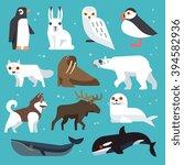 polar animals icons. polar...