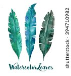 watercolor leaves set | Shutterstock . vector #394710982