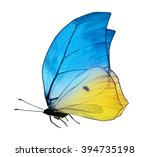 Stock photo color butterfly isolated on white 394735198