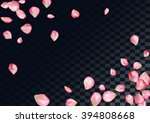 Stock vector abstract background with flying pink rose petals 394808668