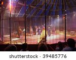 Animal Trainer In A Circus