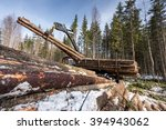 Small photo of Image of logger loads harvested trunks in forest