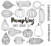 hand drawn line pumpkin  squash ...   Shutterstock .eps vector #395048992