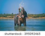 Elephant Spraying Water To...