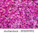 Artificial Pink Orchid Backdro...