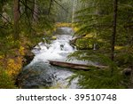 Wild And Scenic Rogue River In...