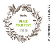 vector background sketch herbs. ... | Shutterstock .eps vector #395118712