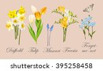 collection of spring flowers | Shutterstock .eps vector #395258458