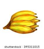 bananas watercolor  musa... | Shutterstock . vector #395311015