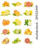 citrus fruit collection | Shutterstock . vector #39532549