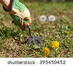 weeding the lawn and grass.... | Shutterstock . vector #395450452