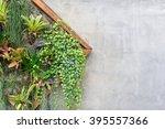 vertical garden in a wooden... | Shutterstock . vector #395557366