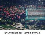 Chairs Under Tree In Garden ...