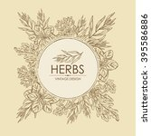 background with herbs. arugula  ...   Shutterstock .eps vector #395586886