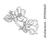 branch apple tree. vector...   Shutterstock .eps vector #395960665
