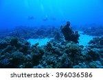 tropical sea underwater... | Shutterstock . vector #396036586