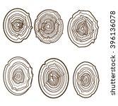 tree rings engraved background. ... | Shutterstock .eps vector #396136078