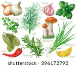 set with green herbs and spices ... | Shutterstock .eps vector #396172792