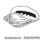 black contour nautical... | Shutterstock .eps vector #396350998