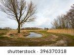 Picturesque Dutch Rural Polder...
