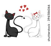 Cute Cats   A Black Tomcat And...
