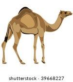 ship of the desert dromedary... | Shutterstock .eps vector #39668227