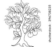 Hands Drawing Apple Tree For...